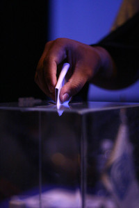 South Africans living abroad can now vote