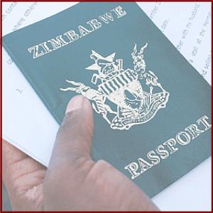 ZSP Permits