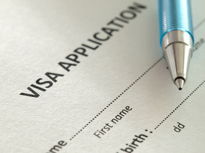 VFS role in immigration South Africa