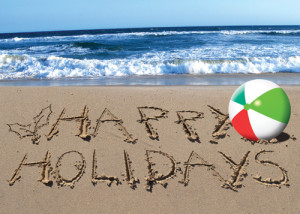 Festive Safety Tips For South Africa