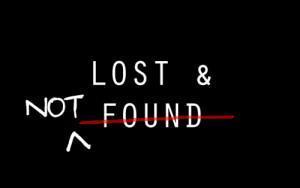 I lost my ID book